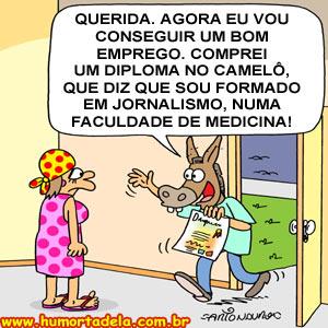 diploma-de-burro